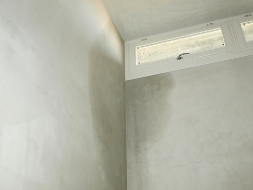 Wet wall in a basement